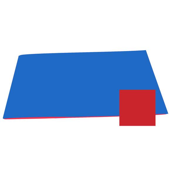 Reversible Color Mat - Blue/Red