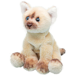 Yomiko Sitting Himalayan Cat - Soft Toy Kitten by Suki Gifts