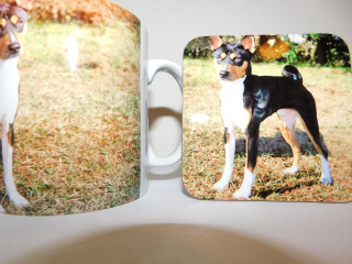 Basenji Standing Black Tan and White Mug and Coaster Set