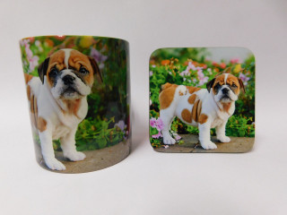 Bull Dog Puppy  Mug and Coaster Set