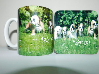 Bull Dog Puppies Mug and Coaster Set