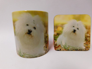 Bolognese Dog Mug and Coaster Set