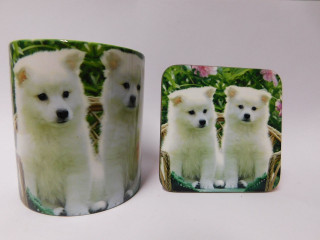 White Akita Puppies Mug and Coaster Set