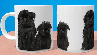 Affenpinscher Puppy & Mum Mug & Coaster