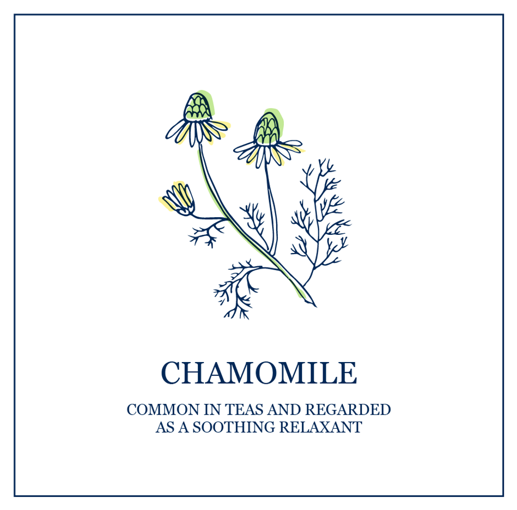 Chamomile (Sensitive)
