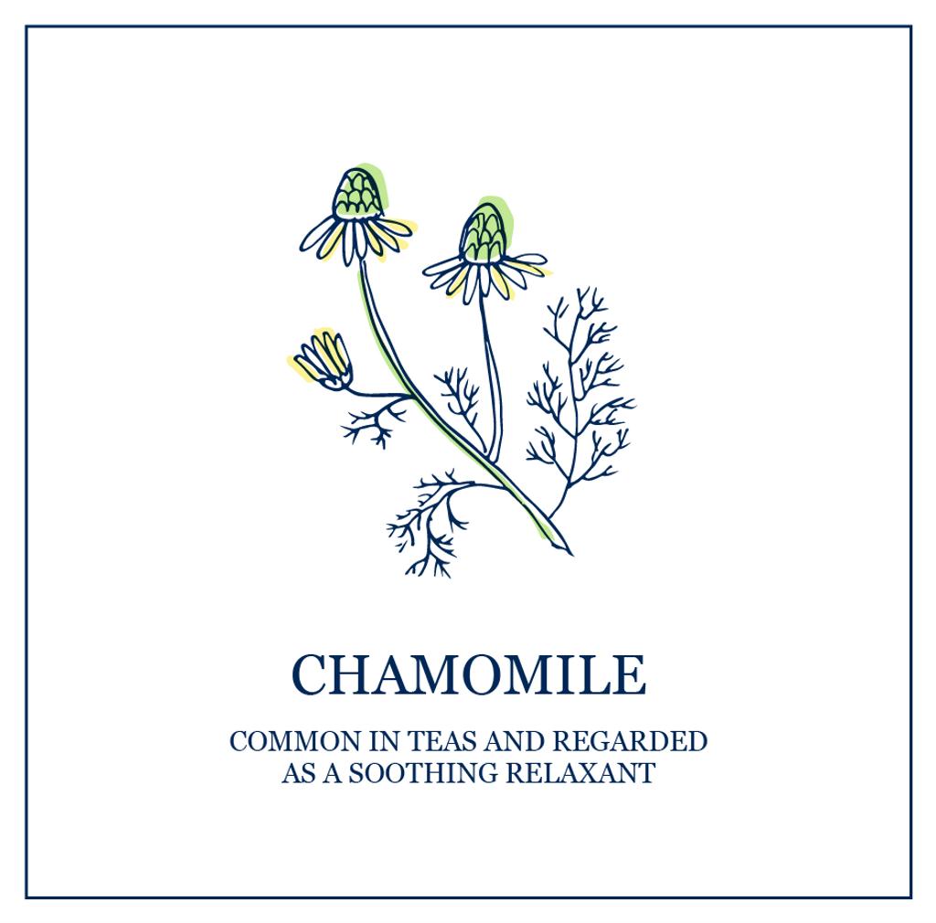 Chamomile (Sensitive)
