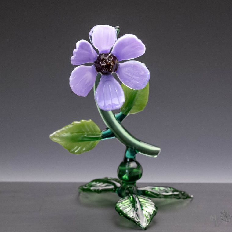 One single, elegant, violet glass flower bloom stands out against the contrasting greens of the leaves