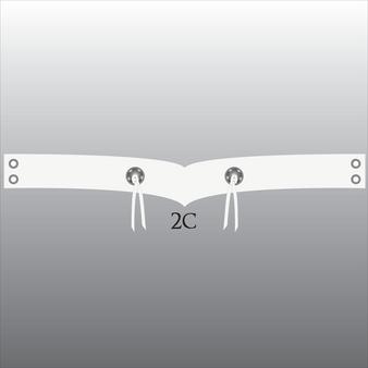 Style 2C