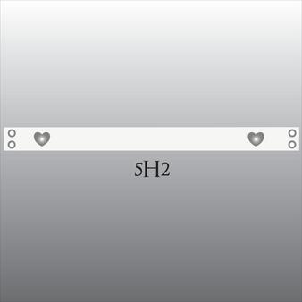 Style 5H2