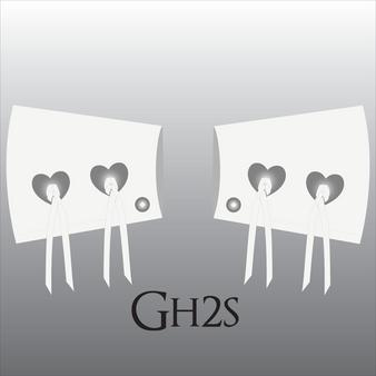 Style GH2S
