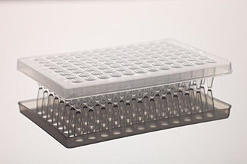 0.2ml 96 Well PCR Plate, No Skirt, Clear, H1 notch, 25-pk, 100-Case
