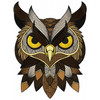 Detailed Owl Face A