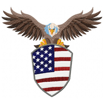 American #06