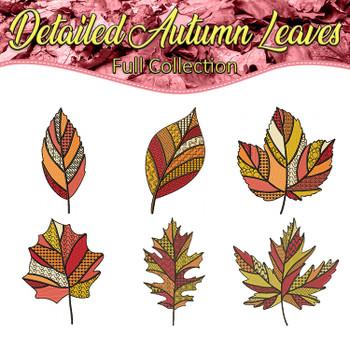 Detailed Autumn Leaves Full Collection