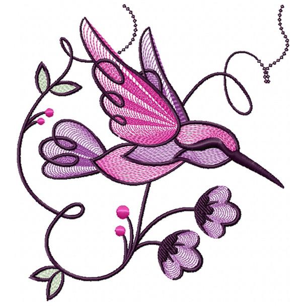 Hummingbird #04