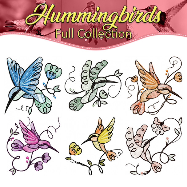 Humming Birds Full Collection