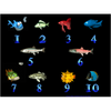 SoftTouch Classic 1: Five Frogs Plus