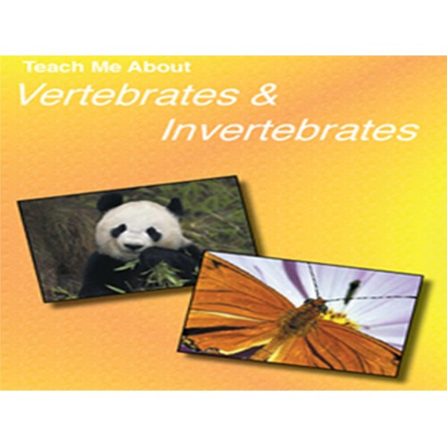 Teach Me About Vertebrates and Invertebrates