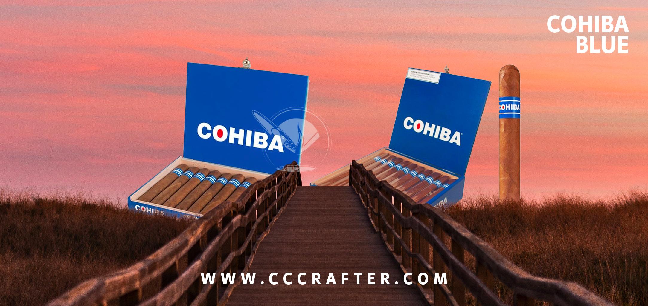 cohi-captura-3d.jpg