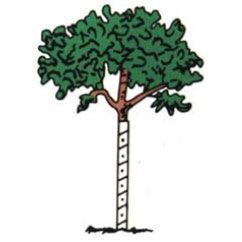 Clark's Vinyl Tree Guard