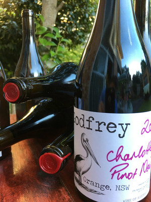2016 Godfrey Charlotte Pinot Noir lining up for her first photo shoot.
