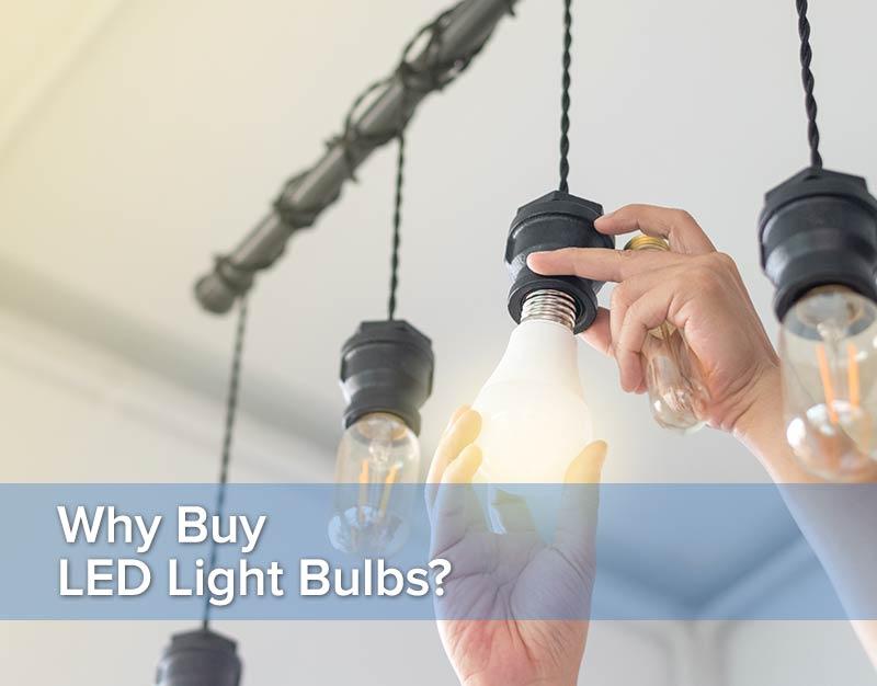 Why Buy LED Light Bulbs?