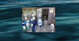 Testing Bottled Water, Ionized Water and Tap Water for Fluoride