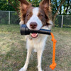 Moxie loves her durable and tough milker toy for dogs.