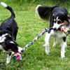 Braided fleece dog tug toy is durable.