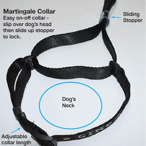 Martingale collar slips over dog's neck then slide down stopper to lock.