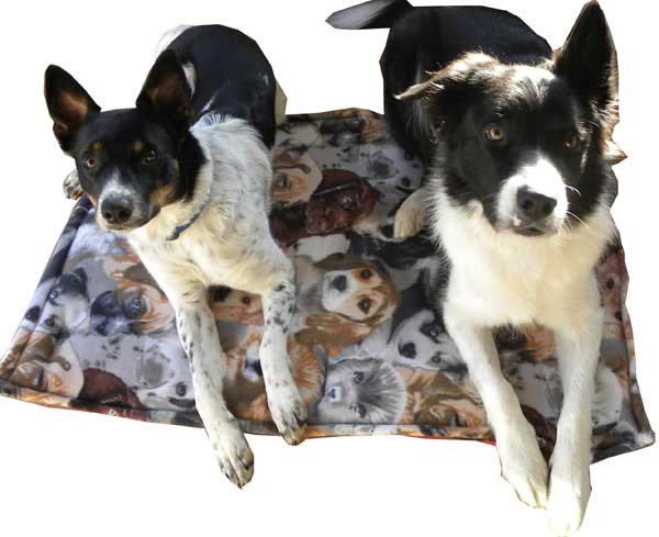 Machine wash and dry, reversible for cool or warm temperatures, never clump, sized to fit standard crates - wash these dog beds hundreds of times and they'll look like new!