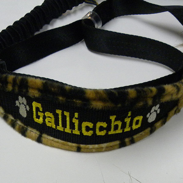 """Whippet"" Style Collar Leash"