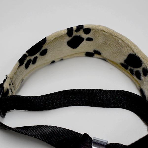 """Whippet"" Collar Tug Leash"