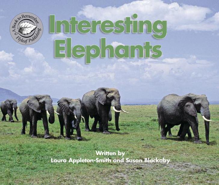 Interesting Elephants