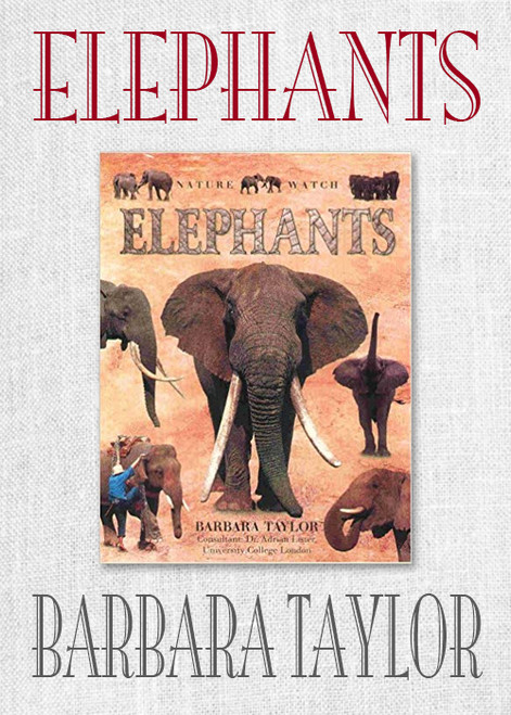 Elephants (Nature Watch) by Barbara Taylor