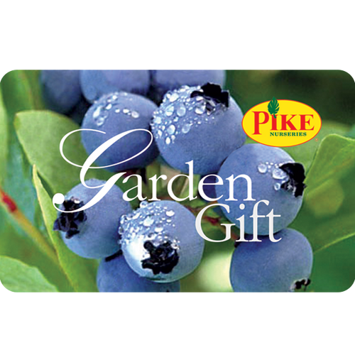 Blueberry Gift Card by Mail