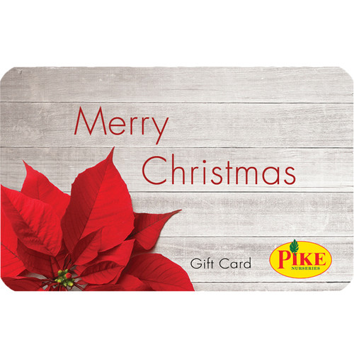 Digital Christmas Poinsettia eGift Card