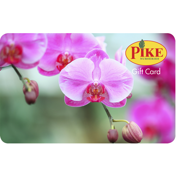 Digital Orchid eGift Card
