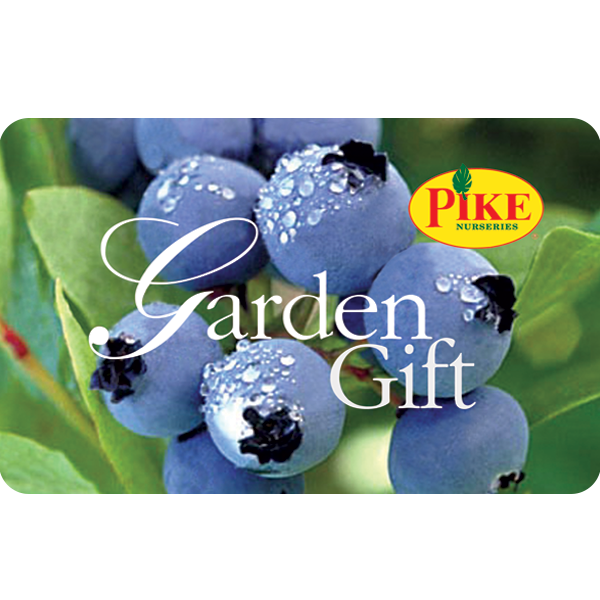 Digital Blueberry eGift Card