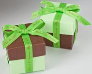 "3/8"" Green Personalized Printed Satin Ribbon"