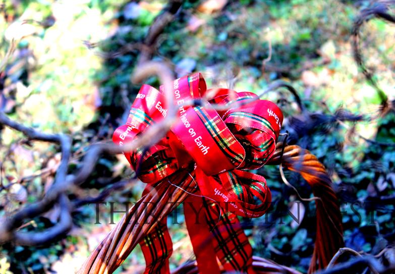 "Personalized 7/8"" Satin Valentine Ribbon"