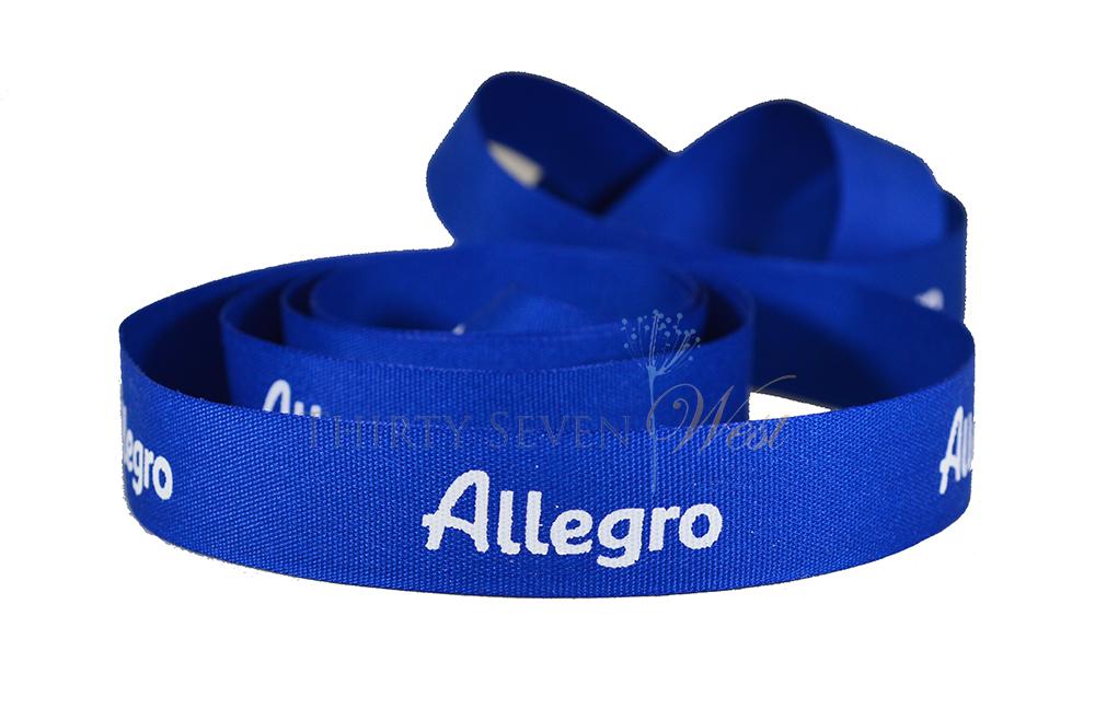 Texture Matte Ribbon, Custom Logo Ribbon,  Logo Printed Ribbon, Custom Ribbon, Matte Ribbon, Blue Matte Ribbon.