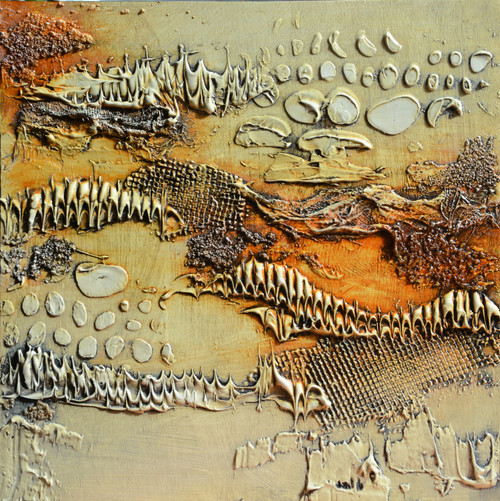 Fossils 7