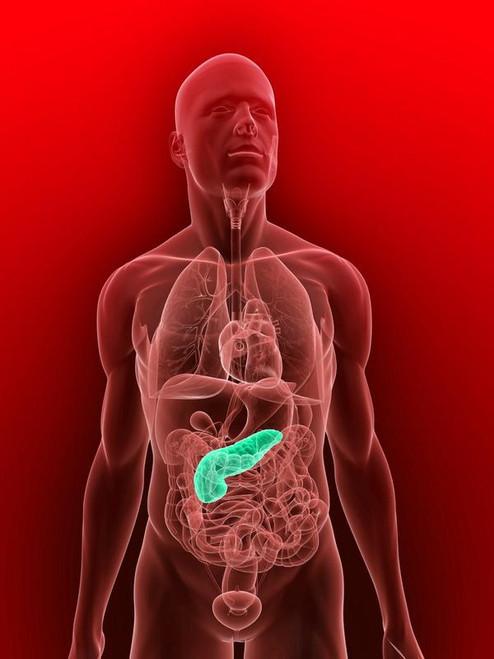 Pancreas Questionnaire