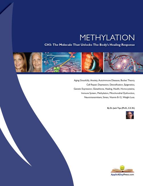Methylation & The Molecule That Unlocks The Body's Healing Responses - WellnessWiz Jack Tips