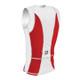DeSoto Men's Shield Del Sol Tri Jersey - Back