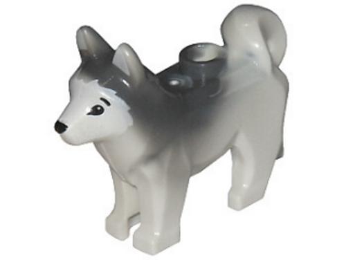 Dog, Husky with Black Eyes, Black Nose (White)