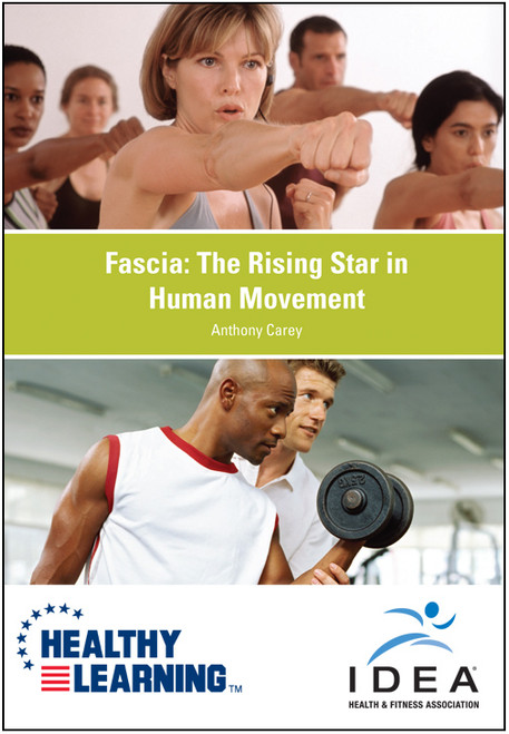 Fascia: The Rising Star in Human Movement