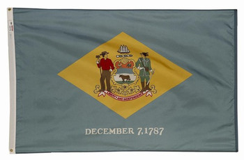 Delaware State Flag 5x8 Feet SpectraPro Polyester by Valley Forge Flag 58332080