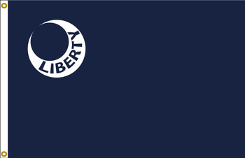 Fort Moultrie 12inx18in Nylon Liberty Flag
